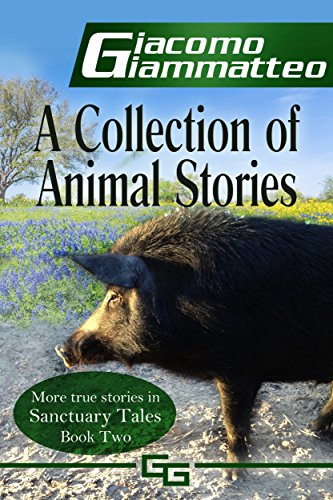 A Collection of Animal Stories (Sanctuary Tales Book 2)