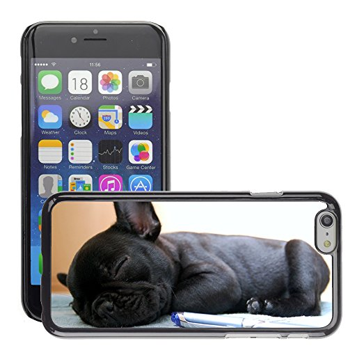 Hot Style Cell Phone PC Hard Case Cover // M00134576 Dog Dogs Bulldog French Bulldog // Apple iPhone 6 PLUS 5.5