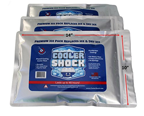 3 Pack Large 18°F Cooler Freeze Packs 10'x14' - No More Ice! Replaces 18 lbs. of Ice and is Reusable - Easy Fill - You Add Water and Save! - 12 lbs. Total When Filled (Zipper Seal)
