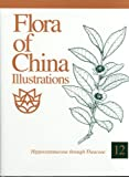 Flora of China Illustrations, Volume 12 : Hippocastanaceae through Theaceae, Flora of China Editorial Committee, 1930723792