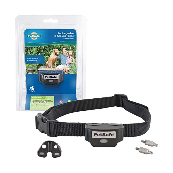 PetSafe Rechargeable In-Ground Fence for Dogs and Cats over 5lb – from the Parent Company of INVISIBLE FENCE Brand…