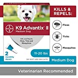 Best Flea And Tick Prevention For Dogs - Bayer K9 Advantix II Flea, Tick and Mosquito Review