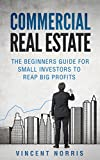 Commercial Real Estate: The Beginners Guide for Small Investors to Reap Big Profits