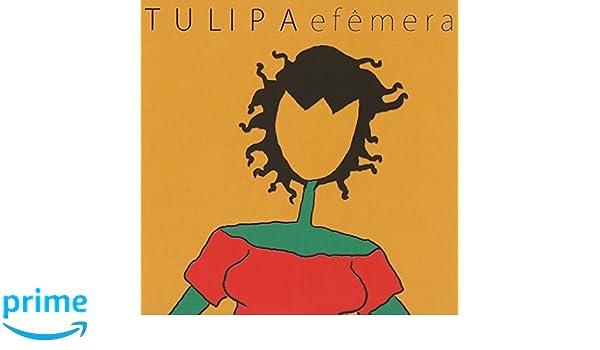 Tulipa efêmera   sounds and colours.