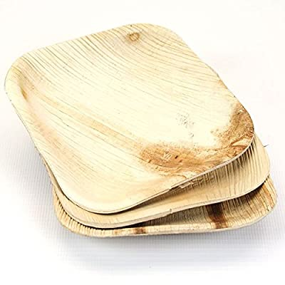 Palm Leaf Plates - Great Price ! Very Sturdy Square Plates for Dinner Salads Desserts Cocktails - Disposable Compostable Eco Friendly Plates - (25 Count)