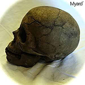 Myard DELUXE Log - Imitated Human Skull Fire Gas Log for Natural Gas / Liquid Propane / Wood Fire Fireplace & Fire Pit (Brown, 1pk)