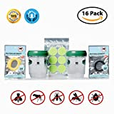 Bee Bait Wasp Trap (16 PACK PREMIUM BUNDLE) – Catches Bees, Wasps, Hornets, Yellow Jackets, Flies, Bugs & More – Includes FREE BONUS ITEMS – 100% Natural Mosquito Repellent Bracelets & Stickers