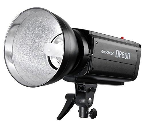 Flash Studio Heads (Godox DP-600 600WS Pro Photography Strobe Flash Studio Light Lamp Head 110V DP600)