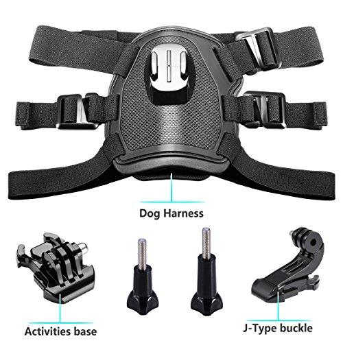 Kourpar Harness Adjustable Mounting Session product image