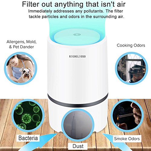 Rigoglioso Air Purifier Air Cleaner For Home With True