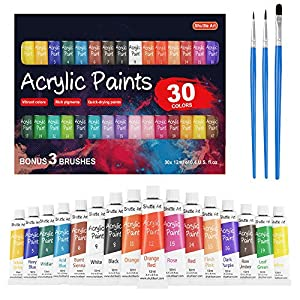Acrylic Paint Set, Shuttle Art 30 x12ml Tubes Artist Quality Non Toxic Rich Pigments Colors Great for Kids Adults…