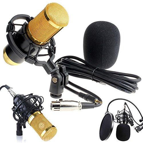 AopnHQ Condenser Pro Audio BM800 Microphone Sound Studio Dynamic Mic +Shock Mount Black