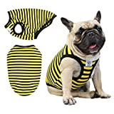 iChoue Dogs Clothes Vest T-Shirts for French Bulldog Pug Boston Terrier Frenchie Cute - M Yellow Black Stripe