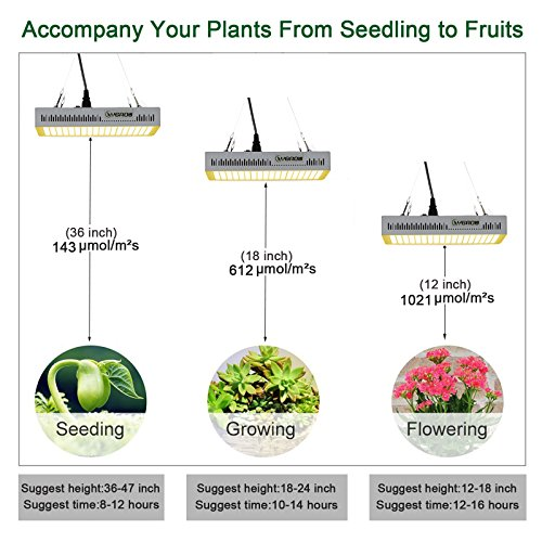 YGROW LED Grow Light Full Spectrum 600W,Reflector-Series Plant Grow Lights for Indoor Plants Veg and Flower with Heatproof Casing 3500K by YGROW (Image #4)