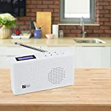 Ocean Digital Portable Internet Wi-Fi/FM Radio with Bluetooth Speaker, Rechargeable Battery Compact Radio for Kitchen Garden