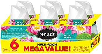 6-Pack Renuzit Adjustable Air Freshener Gel (After The Rain)