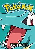 Pokemon All Stars, Vol. 16