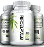 EPICATECHIN (350mg x 60ct) by EVOGANICA Review