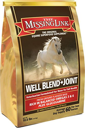 THE MISSING LINK EQUINE WELL BLEND + JOINT by Missing Link