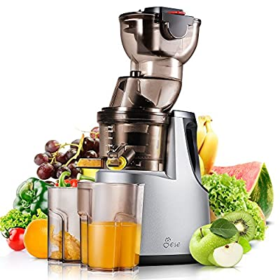 "Juicer Extractor Machine, JESE 3.4"" Wide Feeding Chute Masticating Juicer 37RPMs Extra Slow Juicer with High Yield Rate for Fruit and Vegetable Juice"