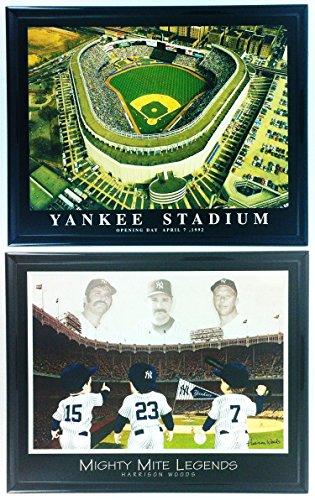 Framed Baseball NY Yankee Stadium Aerial Print Set of 2 LL6002 (Stadium Aerial Yankee)