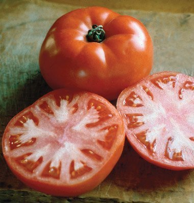 David's Garden Seeds Tomato Beefsteak Valley Girl DSGT741 (Red) 25 Hybrid Seeds