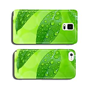 Water drops on green leaves cell phone cover case iPhone6 Plus