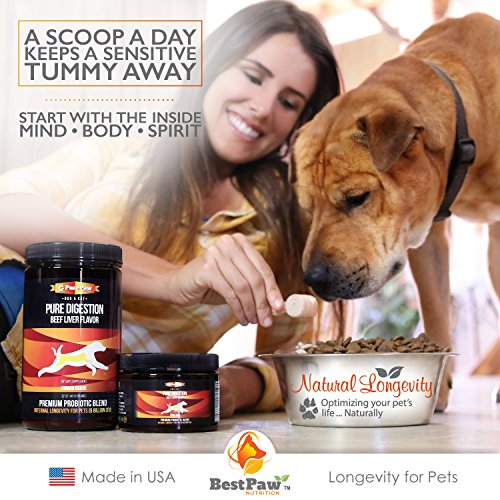 Dog Cat Premium Probiotic Prebiotic health and wellness Supplies