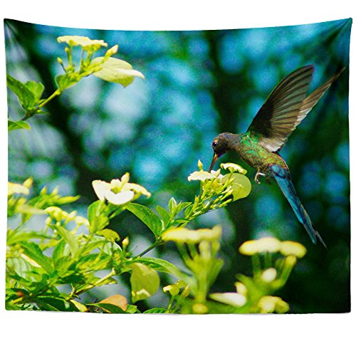 Hanging Blossom Hummingbird Feeder (Westlake Art - Flower Color - Wall Hanging Tapestry - Picture Photography Artwork Home Decor Living Room - 68x80 Inch (813FF))