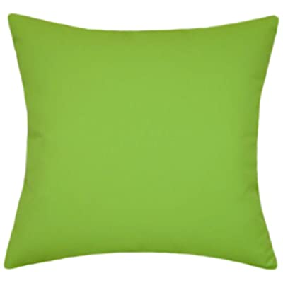 TPO Design Sunbrella Macaw Indoor/Outdoor Solid Patio Pillow 14x14 (Small): Home & Kitchen