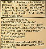Gt's, Kombucha Classic New World Noir Organic, 16.2 Fl Oz, 3% Abv