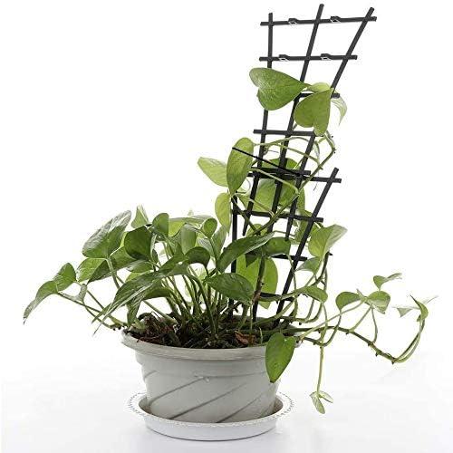 1 PC DMZ Plastic Climbing Trellis Plant Vine Leaf Support Stakes,Flower Plant Climbing Frame Trellises for Potted Climbing Plant Vines Vegetables Climbing Stakes
