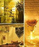 Govee Led Fairy Lights Bedroom, 66 Feet Fairy
