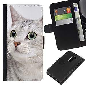All Phone Most Case / Oferta Especial Cáscara Funda de cuero Monedero Cubierta de proteccion Caso / Wallet Case for LG G2 D800 // Egyptian Mau Shorthair Grey Sokoke Cat