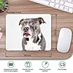 Comfortable Mouse Mat - American Pit Bull Staffy Terrier Dog 23.5 x 19.6 cm (9.3 x 7.7 inches) for Computer & Laptop, Office, Gift, Non-Slip Base - RM12382 9