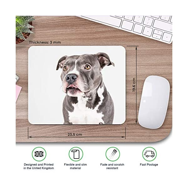 Comfortable Mouse Mat - American Pit Bull Staffy Terrier Dog 23.5 x 19.6 cm (9.3 x 7.7 inches) for Computer & Laptop, Office, Gift, Non-Slip Base - RM12382 2