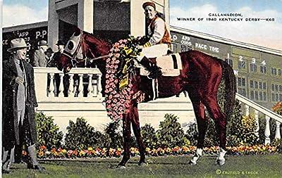 Gallahadion, Kentucky Derby, USA Horse Racing Trotter, Postcard Unused