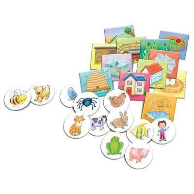 Carson Dellosa Education Where Do I Live?: Toys & Games