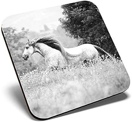 Gran posavasos cuadrado BW – Caballo español puro andaluz | Posavasos de calidad brillante | protección de mesa para cualquier tipo de mesa #35233