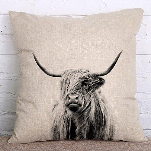 Polly Portrait of a highland Cow Cotton Linen Throw Pillow Case Decorative Sofa Cushion Cover 18×18 inch