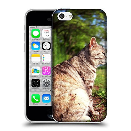 Just Phone Cases Coque de Protection TPU Silicone Case pour // V00004306 graisse chat se trouve dans le jardin // Apple iPhone 5C