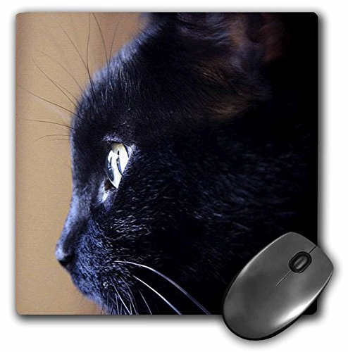 Price comparison product image 3dRose LLC 8 x 8 x 0.25 Inches Extreme Close-Up of Black Cat Pattern Mouse Pad (mp_49295_1)