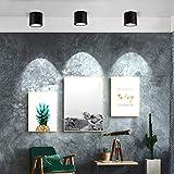 TOPMO 10W LED Ceiling Spotlight Fixture Surface