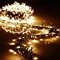 Christmas Cluster Lights 44 Foot Garland with 1300 Warm White Lights on Green Wire with Remote Control - Raz Exclusive Twinkle Function