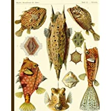 "Tafel 42 - Ostracion, Kunstformen der Natur: Vintage Pufferfish Illustration Notebook, 200 Page Softcover Journal, College Ruled, 8""x10"" Workbook for School, Students, and Teachers"