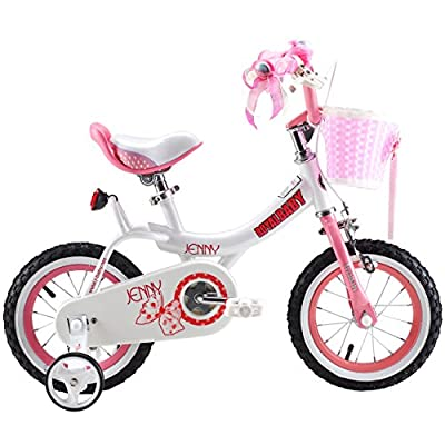 Royalbaby Jenny Princess Pink Girl's Bike with Training Wheels and Basket, Perfect Gift for Kids, 12-14-16 inch wheels