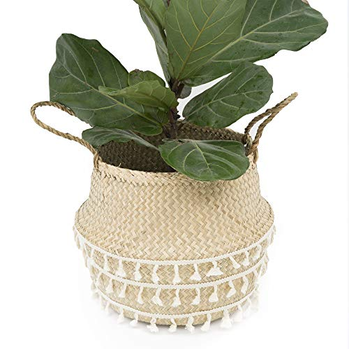 - La Maia Small Net Woven Seagrass Belly Plant Basket with Handles Woven Planter Basket for Storage, Laundry, Picnic, and Beach Bag (Small, Natural Net Brown)