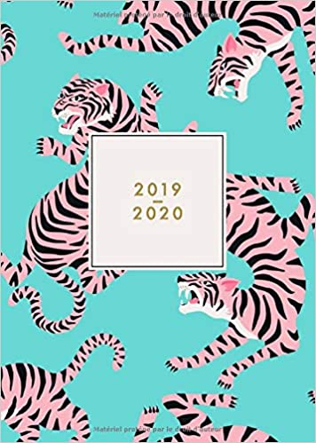 Amazon.com: 2019 - 2020: Agenda 18 mois journalier 2019/2020 ...