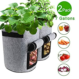 2 grow bags with a few examples of vegetables you can grow in them: carrots, tomatoes, peppers and onions