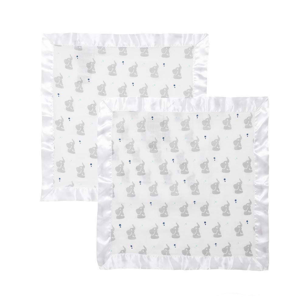 aden by aden anais security blanket 2 pack dove